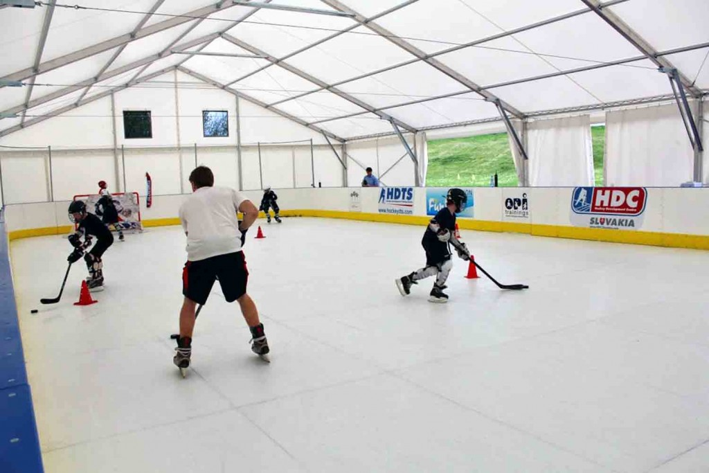 Synthetic Ice
